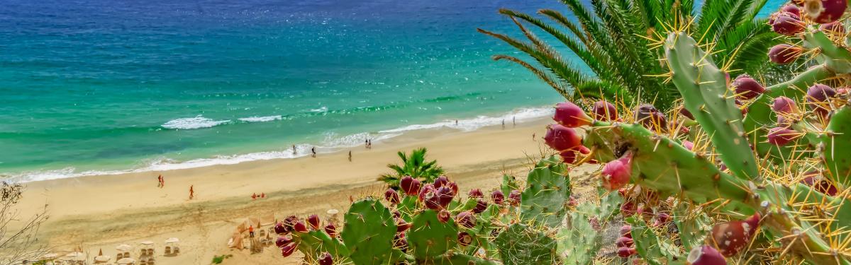 Strand von Esquinzo, Fuerteventura, kanarische Inseln, (Kanaren, Spanien)
