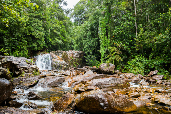 Waterfall in Sinharaja rainforest