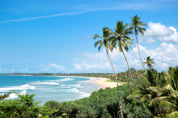 Beach, palms and turquoise water of Indian Ocean, Bentota, Sri Lanka